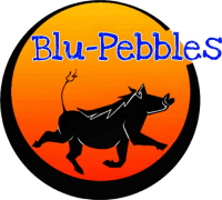Logo for Blu Pebbles Tours and Transfer South Africa